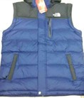 Áo The North Face Lông vũ nam tháo tay Down and Vest together f